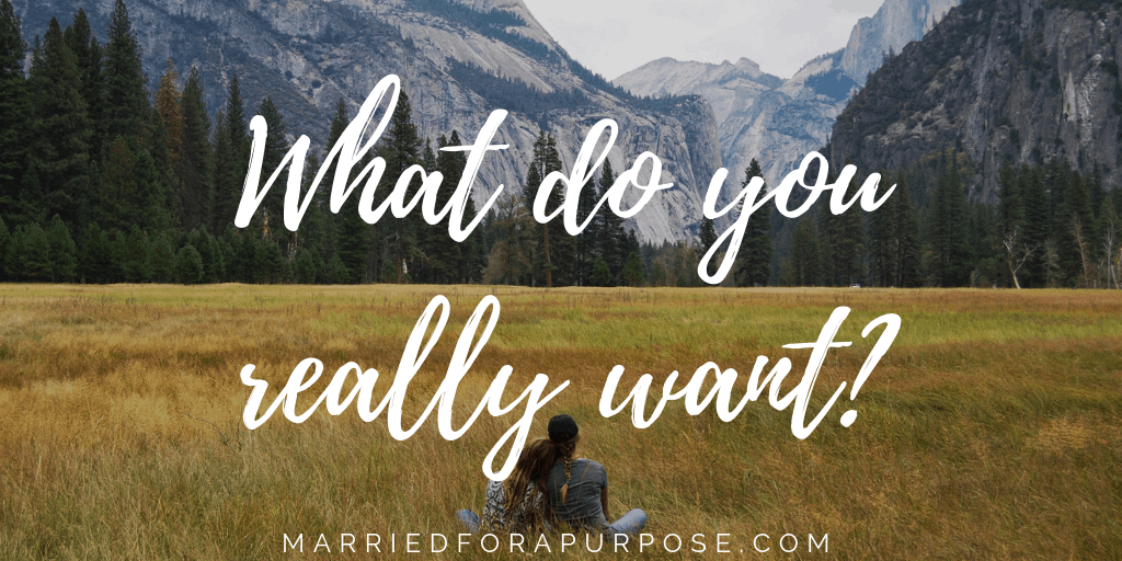 IS IT WHAT YOU WANT … OR WHAT YOU WANT TO WANT?