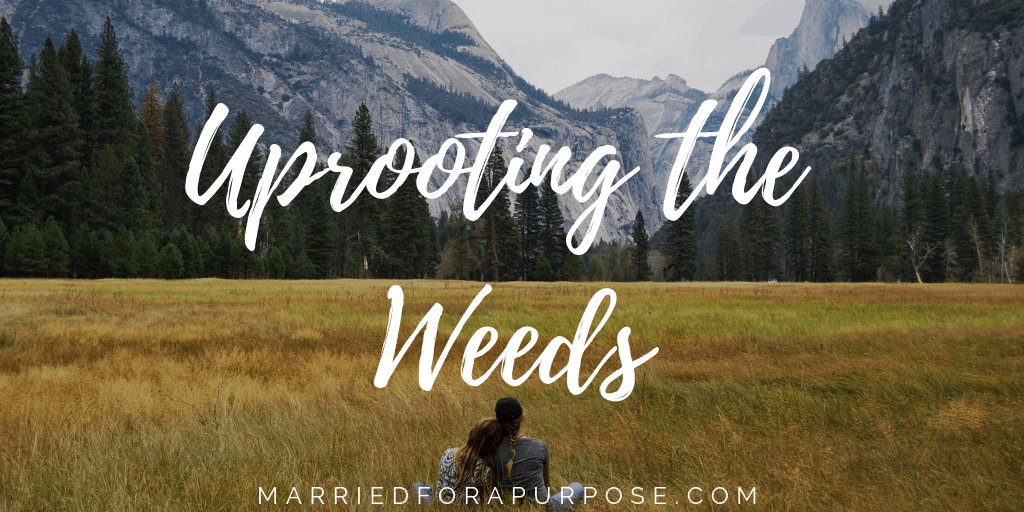 HOW TO UPROOT THE WEEDS IN LIFE
